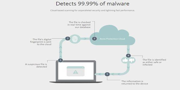 Avira-Antivirus-Virus-Detection